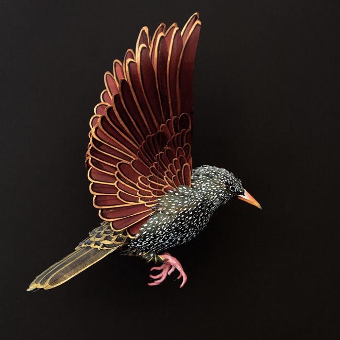 бумажные птицы Диана Белтран Херрера 3 (700x700, 283Kb)