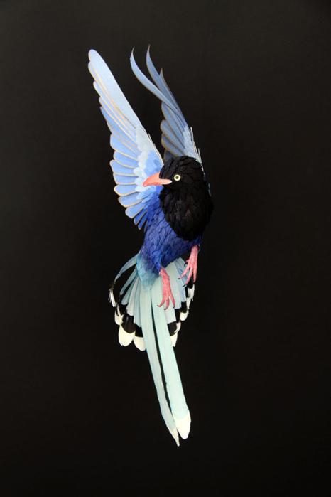 бумажные птицы Диана Белтран Херрера 10 (466x700, 154Kb)