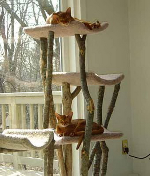Кошки для деревьев своими руками
