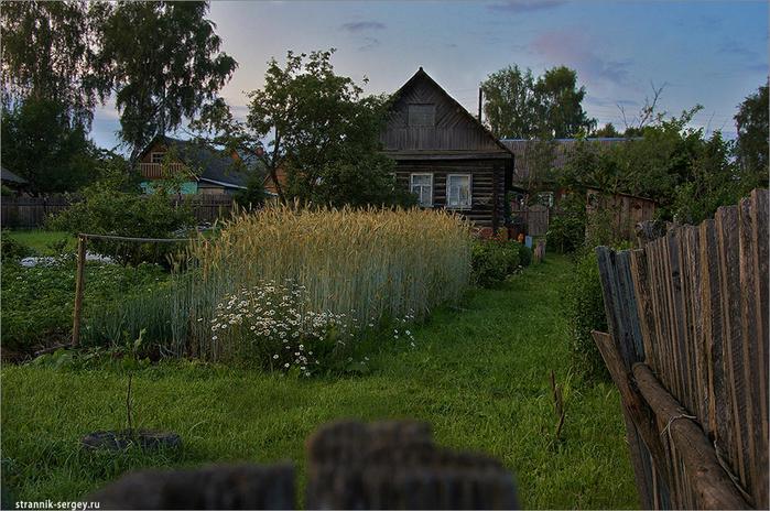 Фото летние деревенские пейзажи