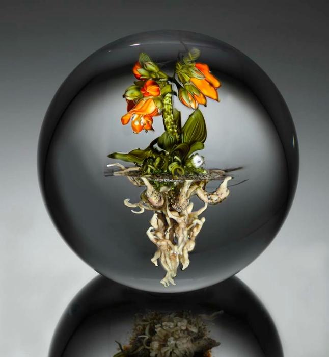 стеклянные шары Paul Stankard 16 (646x700, 169Kb)