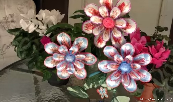 Цветы из пластиковых бутылок  (3) (700x413, 192Kb)