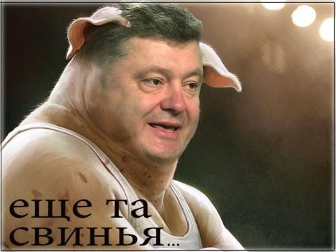 ПОТРОХ - свиня та ще (480x360, 134Kb)
