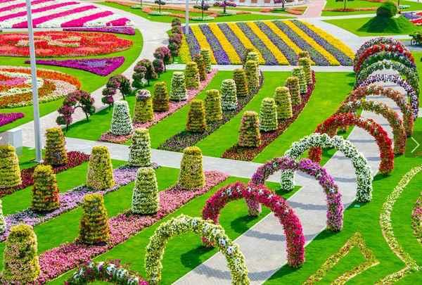 dubai_miracle_garden (600x405, 366Kb)