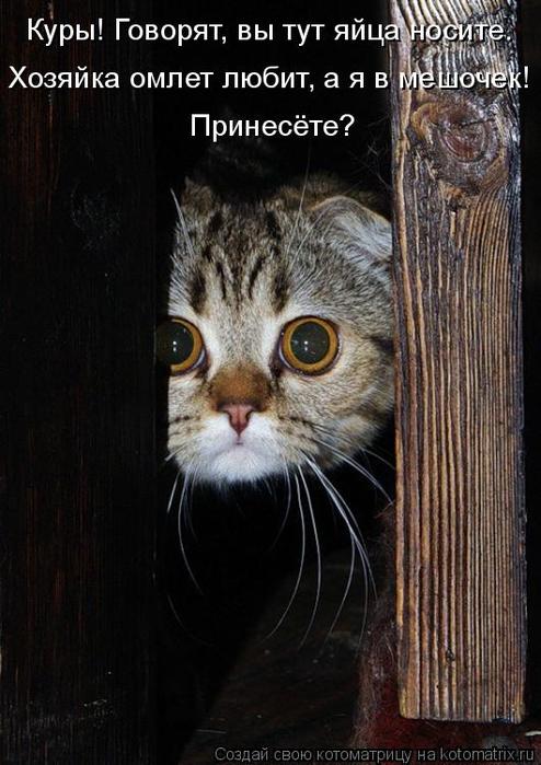 kotomatritsa_GA (494x700, 307Kb)