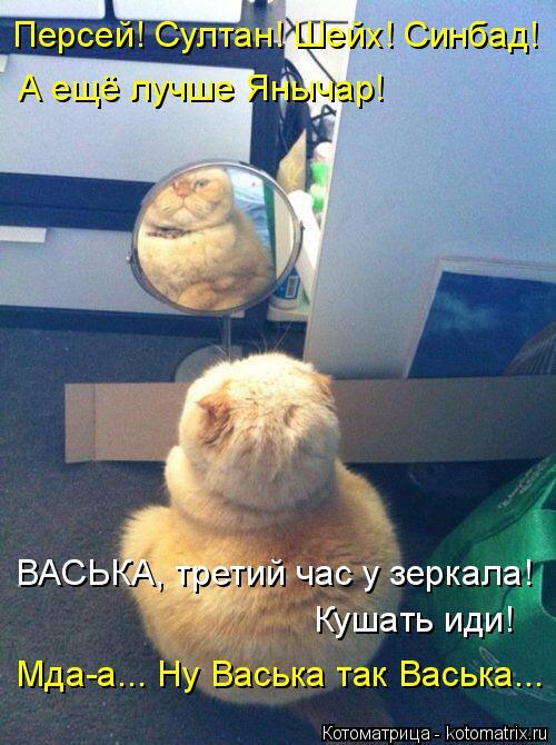 kotomatritsa_os (500x670, 331Kb)
