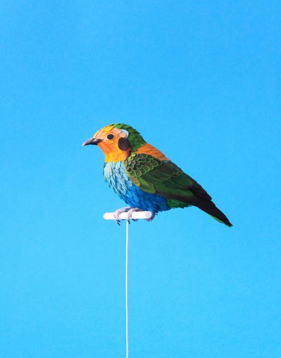birds-1 (549x700, 273Kb)