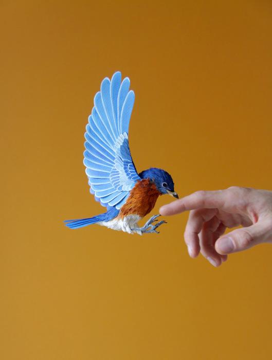 birds-6 (529x700, 223Kb)