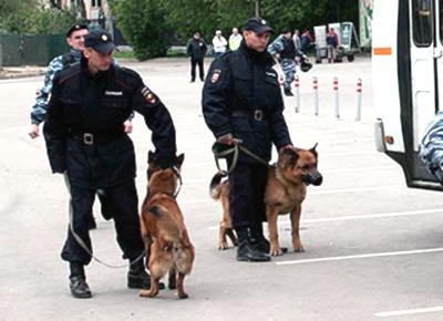 Арест киевских диверсантов в Москве (400x290, 49Kb)