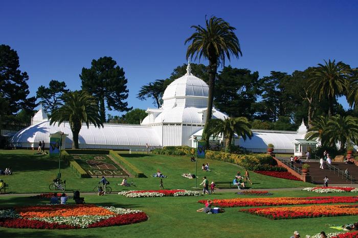 ботанический сад сан-франциско фото 3 (700x467, 391Kb)