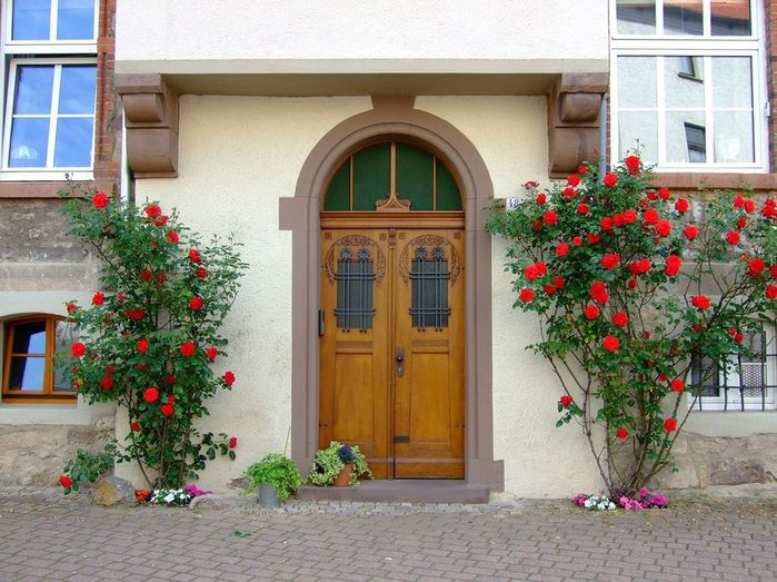 doors_flowers_19 (700x523, 88Kb)