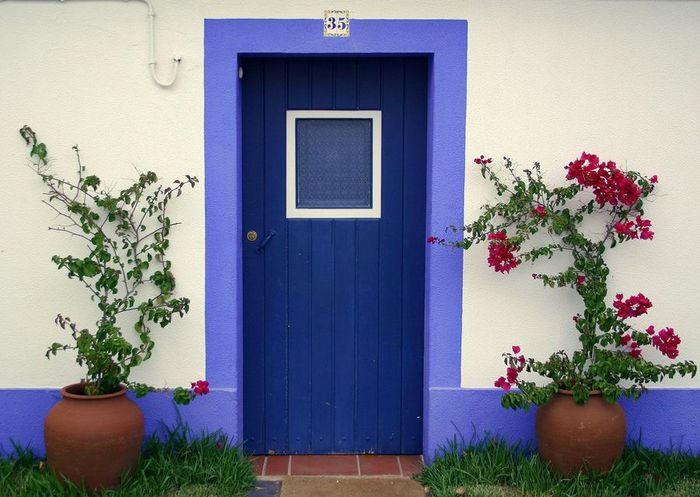 doors_flowers_28 (700x497, 63Kb)