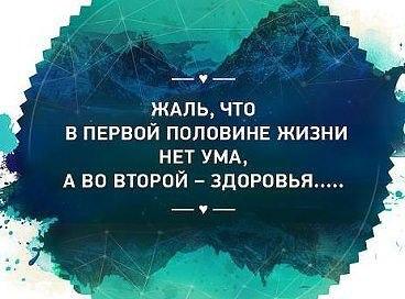 1жвль что нет ума. (368x272, 28Kb)