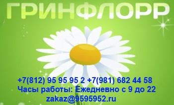 rastvorperekis-vodoroda-otzyvy-1385315667 (350x211, 50Kb)