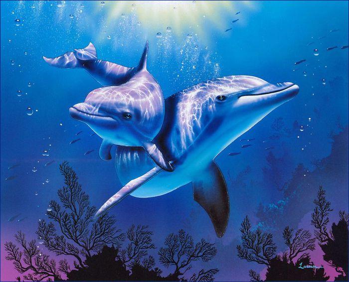 delfini (700x566, 72Kb)