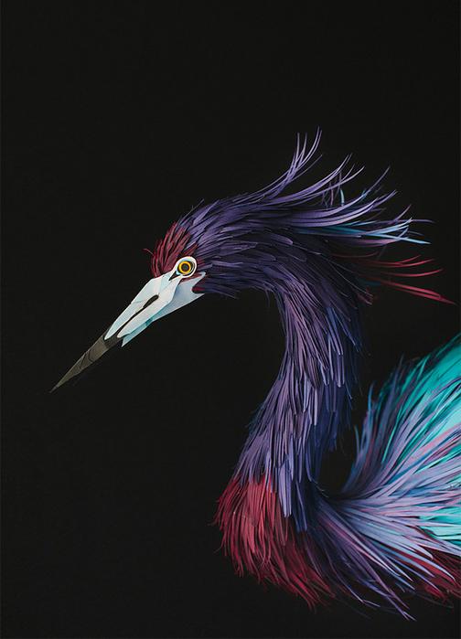birds-11 (504x700, 273Kb)