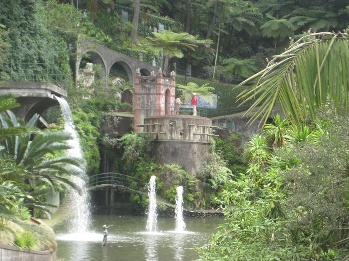 Ботанический сад на Мадейре1 (700x525, 349Kb)