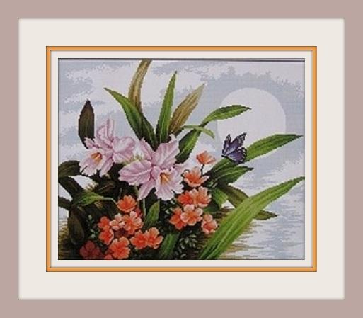 орхидеи (513x449, 60Kb)