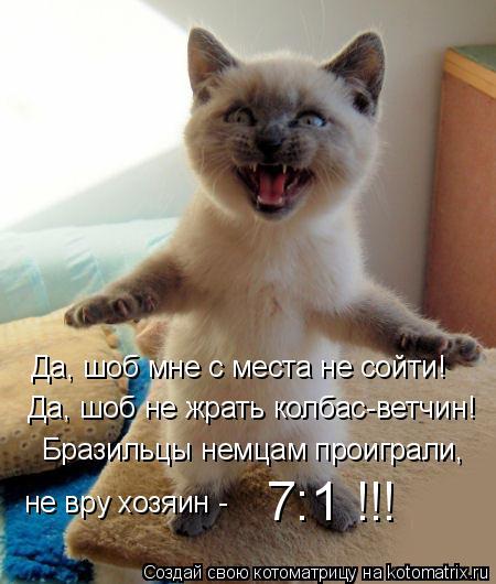 kotomatritsa_D (450x530, 40Kb)