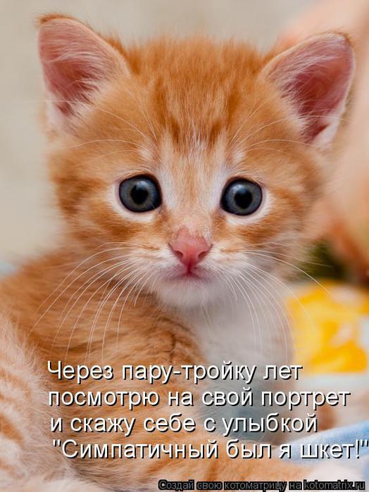 kotomatritsa_iJ (524x700, 61Kb)