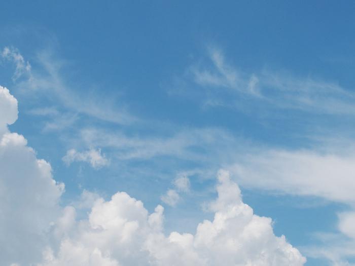 полет белой птицы. медитация Дмитрия Рыбина/5179278_00936 (700x525, 152Kb)
