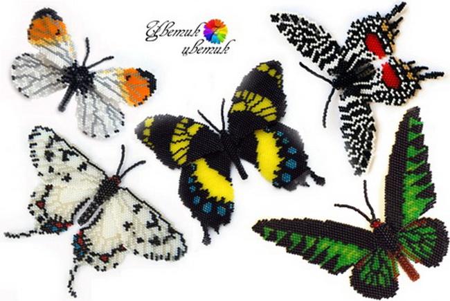 Бабочки плетутся в технике