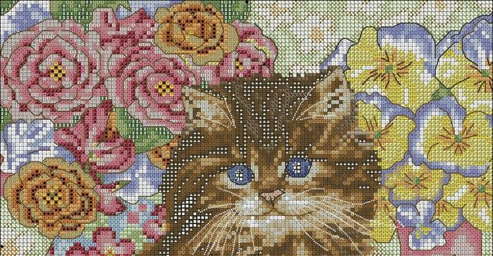 sweet_cat1 (700x363, 306Kb)