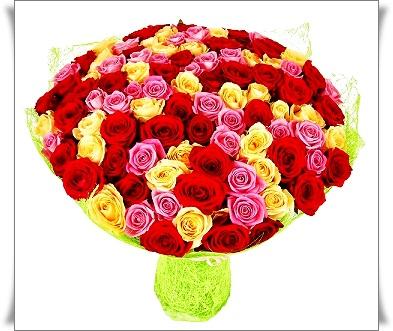 f20130814115616-kaleydoskop_romantiki_101_roza (393x331, 70Kb)