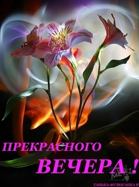 http://img0.liveinternet.ru/images/attach/c/11/114/937/114937034_2d72caf100ae9b33ccaa7ab22b44acdd.jpg