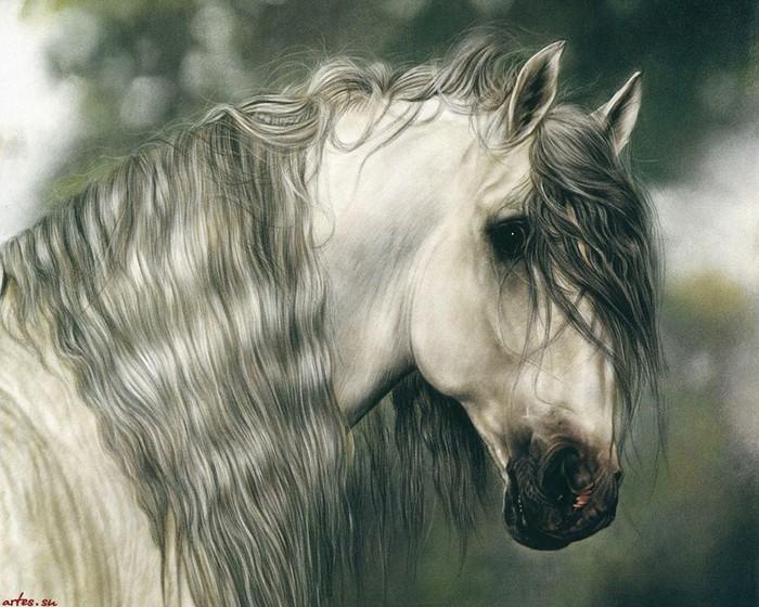 Или мне снится, иль чудится мне, будто скачу я на быстром коне!