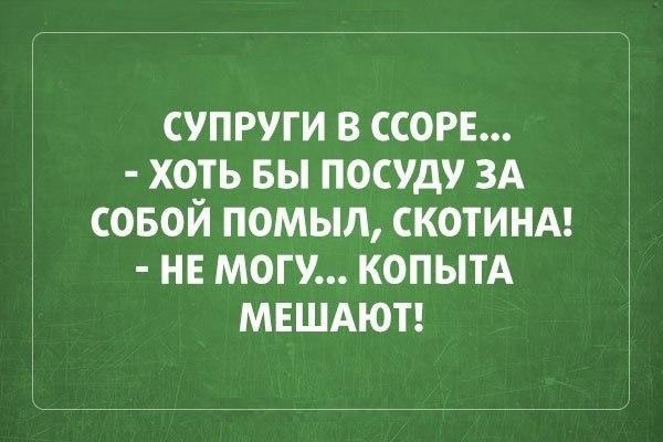 smeshnie_kartinki_140476496081 (600x400, 152Kb)