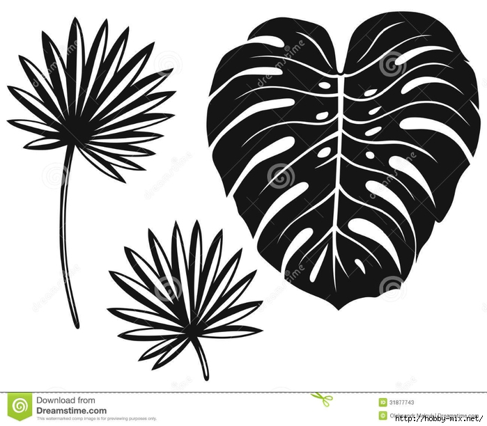 set-palm-leaves-isolated-white-background-31877743 (700x612, 201Kb)