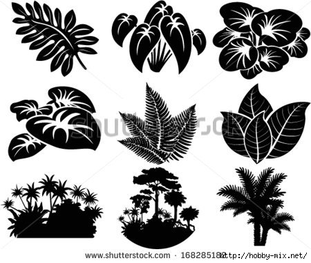 stock-vector-vector-set-of-jungle-icons-with-tropical-trees-plants-and-leaves-168285182 (450x380, 110Kb)