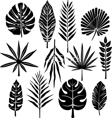 tropical-leaf-vector-638919 (380x400, 117Kb)
