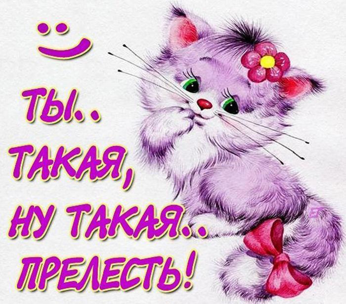 http://img0.liveinternet.ru/images/attach/c/11/114/985/114985088_5600607_BnhQkYdXNno.jpg