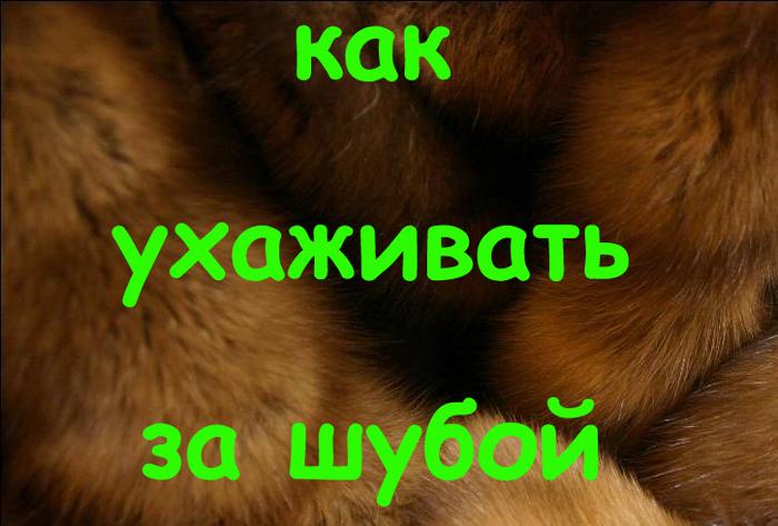 шубы из соболя, как хранить шубу из меха соболя, купить меховые шубы, купить мех, как правильно ухаживать за шубами и изделиями из меха, как ухаживать за соболиной шубой из соболя, /4682845_1375892562_kopiya (700x473, 274Kb)