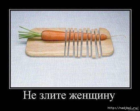 nadjibok58/5186405_getImage_11 (492x390, 105Kb)