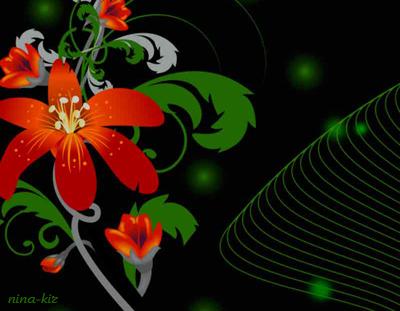 Рисованные-цветы-на-черном (400x311, 164Kb)