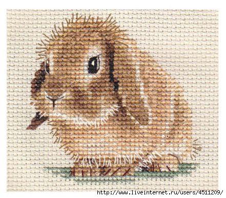 Кролик. Вышивка крестом.