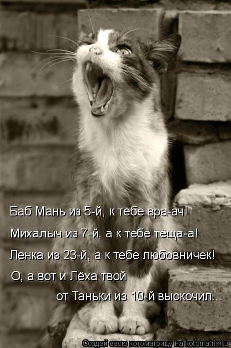 kotomatritsa_a4 (465x700, 237Kb)