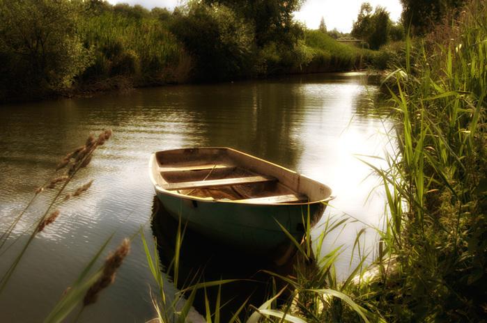 Фильм на берегу реки 1986