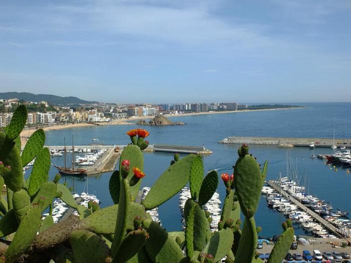 фото-бланеса-испания (700x525, 53Kb)