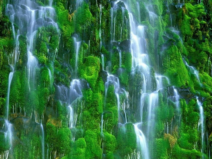 Amazing_Green_Waterfalls_Wallpaper_e4mph (700x525, 344Kb)