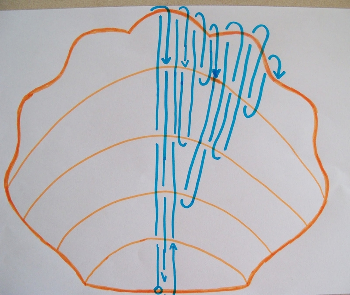 Плетеная ракушка своими руками 6