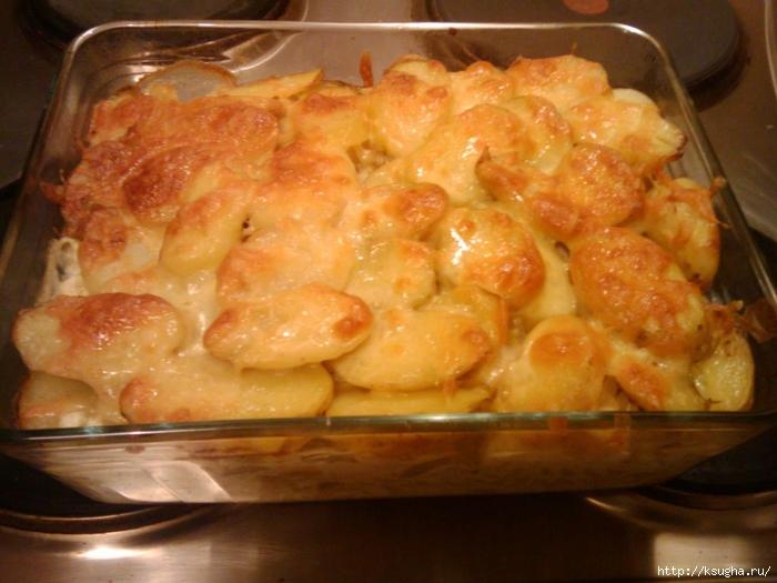рецепты приготовления блюд картофеля фото