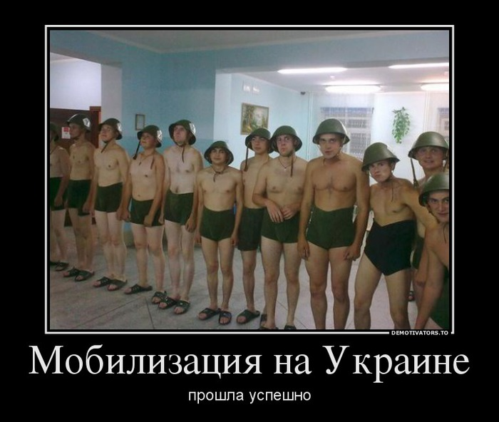 2796051_455364_mobilizatsiyanaukraine_demotivators_to (700x592, 77Kb)