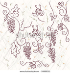 Превью stock-vector-grape-design-elements-on-the-grunge-background-59999311 (450x470, 148Kb)