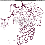 ������ grapes-with-leaves-b20e0 (700x700, 261Kb)