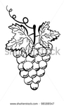 Превью stock-vector-grapes-bunch-of-grapes-on-a-white-background-98188547 (286x470, 60Kb)