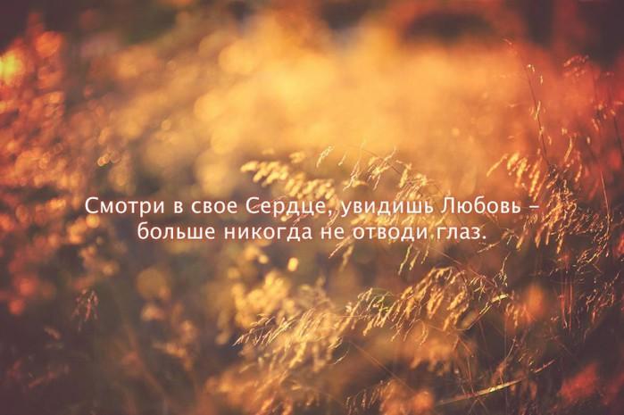 lookatyourheart-800x532 (700x465, 74Kb)